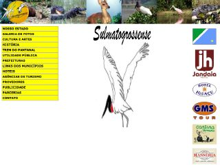 Thumbnail do site Sulmatogrossense.com.br